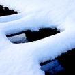 冬の散歩道