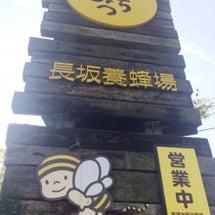 長坂養蜂場に行ってき…
