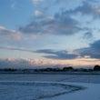 今日も雪ですよ