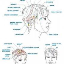 脳内デトックス・アク…