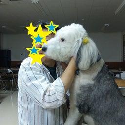 画像 ○○研究会☆生物工場(Ⅲ)ヽ(^o^)丿 の記事より 1つ目