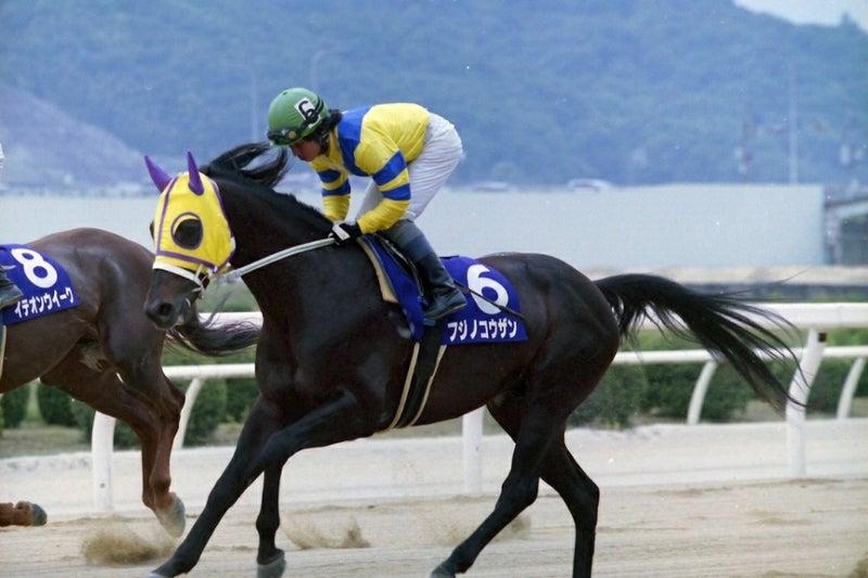 伝説のアラブ馬がヨミガエル!! | くろべえの馬旅