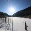 自然湖の氷の上