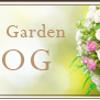 2/23 幸せな結婚を叶える妊娠力アップセミナーの画像
