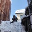 雪国におけるサングラ…