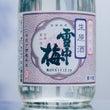 【日本酒】雪中梅 特…