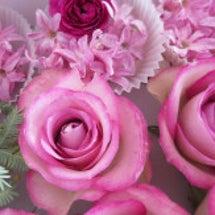 レカンのバラとヒヤシ…