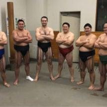 大相撲トーナメント