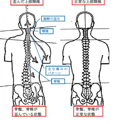 身体の内側ライン、外側ライン 1の記事に添付されている画像