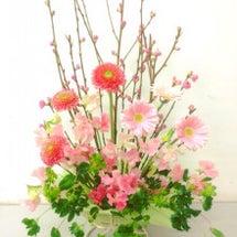 春のピンクフラワーア…
