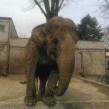 宇都宮動物園でこんな…
