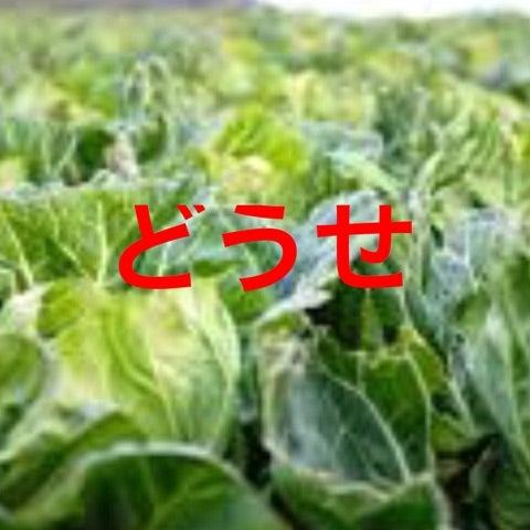 {DE769DC4-E018-48FE-AFD9-D1C4832B421B}