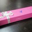 「チョコレート祭」