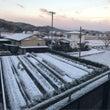 雪と西遊記①…(^○…