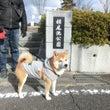 相生市でお散歩からの…