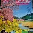 【第20回みなみの桜…