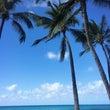 ただいま、ハワイ♡