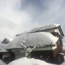 今回の大雪について