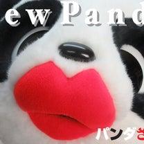 パンダ着ぐるみ、新作の記事に添付されている画像