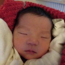 1月27日生まれのベ…
