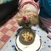 ご飯の時間の画像