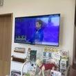 日本中がくぎ付け!!