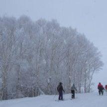 志賀高原スキー場(3…