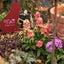 ひと仕事の収穫&くるカラの花壇