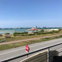 2月後半と沖縄