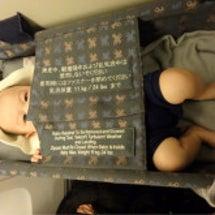 0歳4ヶ月子連れハワ…