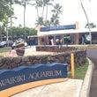 ハワイで思い出したこ…