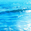 明日から太陽魚座シー…