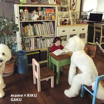まめちゃんの机と椅子♪の記事に添付されている画像