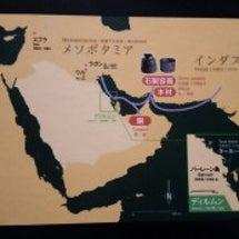 【アラビアの道-サウ…