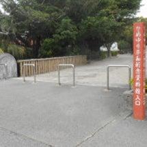 琉球に行って来ました…