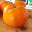 幻の柑橘『レッドウイ…
