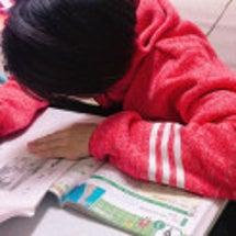 小中学に人気「クルト…