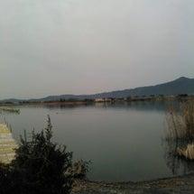 今日も琵琶湖へ