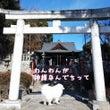 下野國一社八幡宮と門…