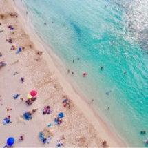 ハワイのビーチをドロ…
