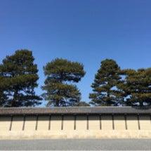 京都は伝統医療の都で…