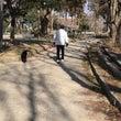 今日は、柳川瀬公園へ