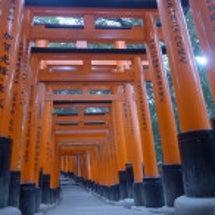 京都で一応 観光らし…