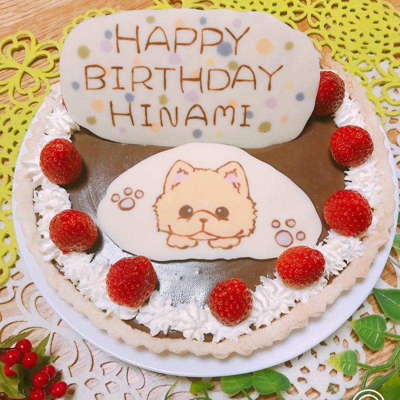 わんちゃんチワワの生チョコタルトケーキ 次女の誕生日ケーキ
