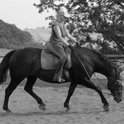 馬を「ハミに出す」方法の記事に添付されている画像