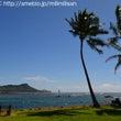 やはり、ハワイのこの…