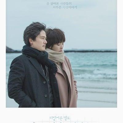 追記あり SBS月火ドラマ「まずキスをしましょうか」の記事に添付されている画像