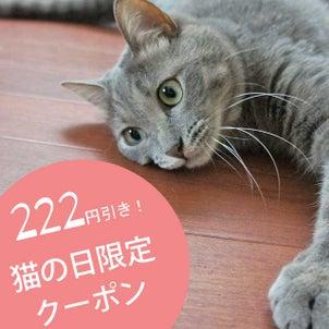 猫の日限定!222円割引きクーポン配布中です♡の画像