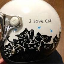 今日は猫の日 2