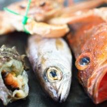 海と食材から春の訪れ…
